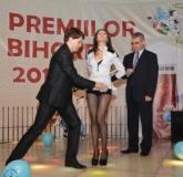 premiile-lui-bihorel-2013-oradea-bihoreanul_047