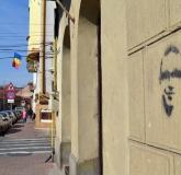 muianul-pe-cladirile-din-oradea-bihoreanul_14